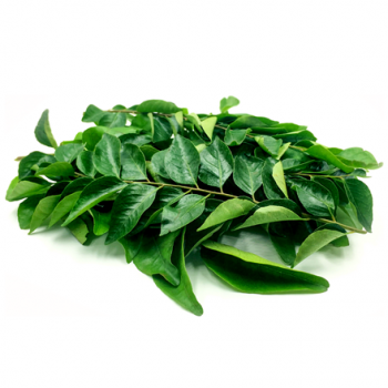 FRESH Curry Leaves 100GM