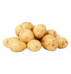 FRESH White Potato 1KG